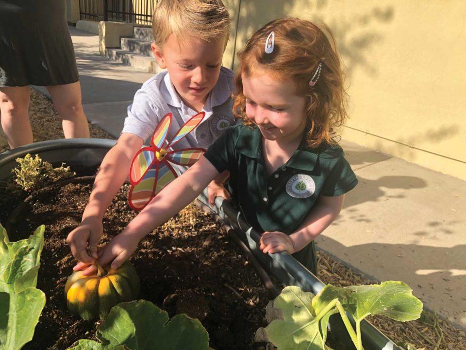 Aspen Academy garden learning
