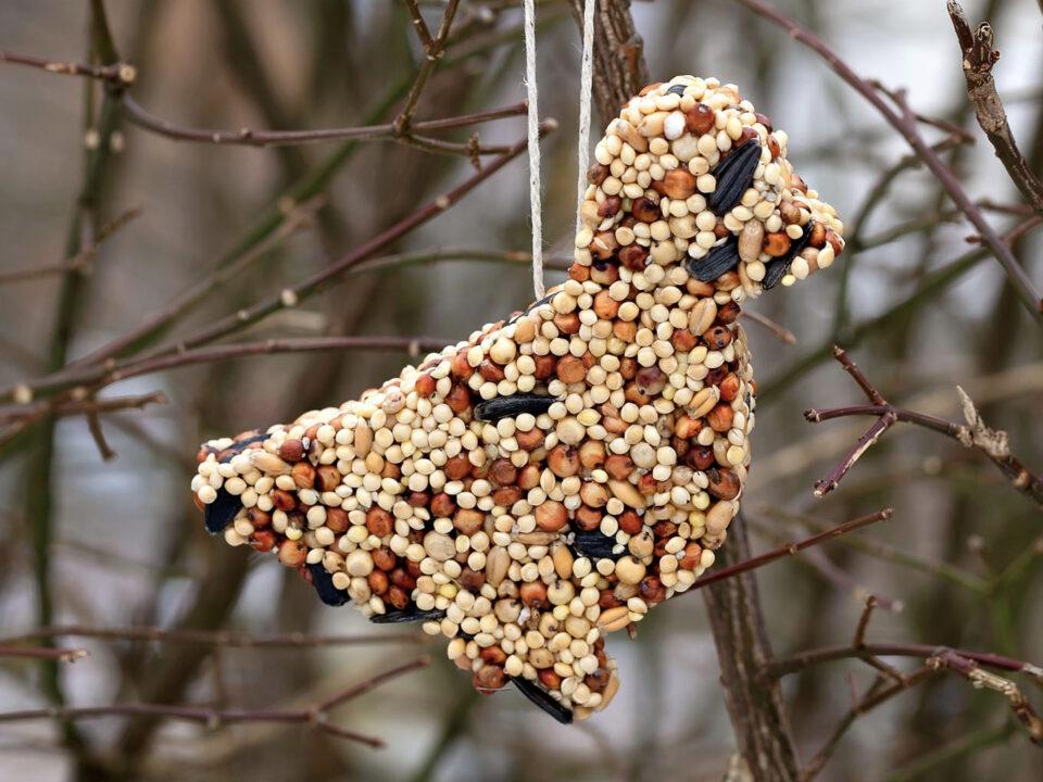 Birdseed Ornament - Fireflies + Mudpies
